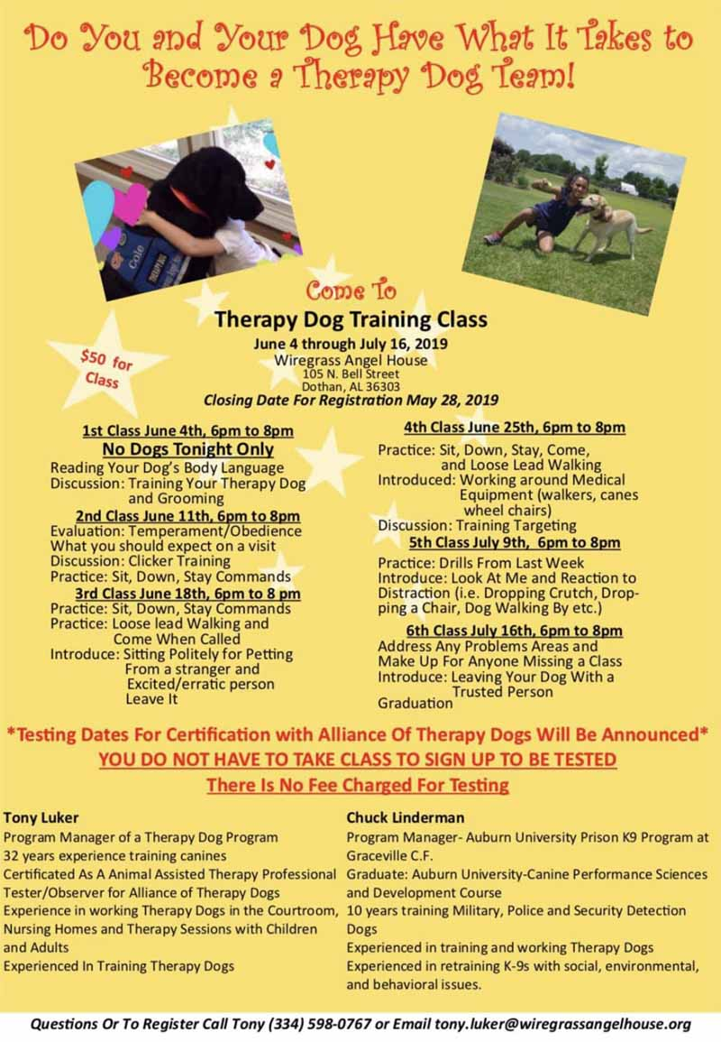 2019 07 16 therapy dog training class